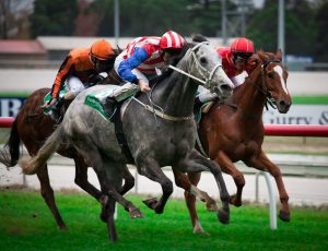 And they're off… Melbourne Cup events